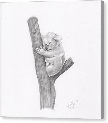 Koala Canvas Print - Koala by Nancy Ferry