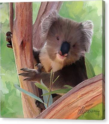 Koala  Painting Canvas Print by Michael Greenaway