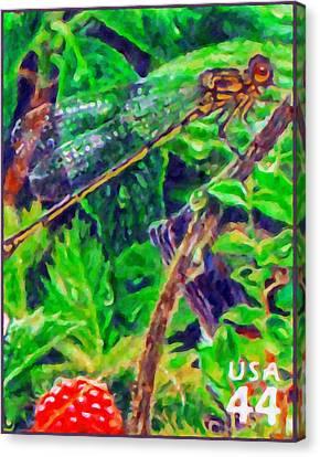 Koele Mountain Damselfly Canvas Print by Lanjee Chee