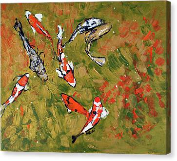 Koi 201746 Canvas Print by Alyse Radenovic