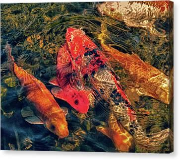 Koi Fish Fresco One Canvas Print