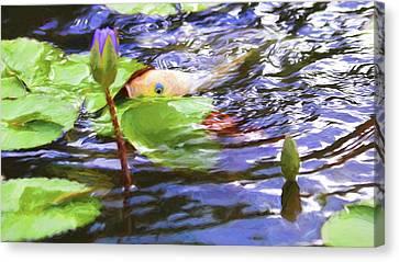 Koi Impression Canvas Print