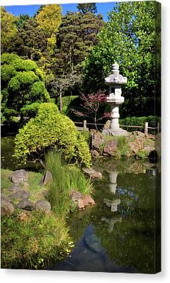 Koi Pond Reflection Japanese Tea Garden At Golden Gate Park - San Francisco Canvas Print
