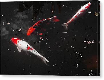 Canvas Print featuring the photograph Koi Trio 1 by Deborah  Crew-Johnson