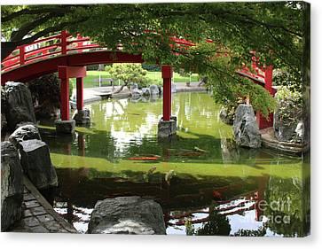 Koi Under The Red Bridge Canvas Print by Carol Groenen