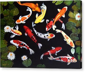 Koi V Canvas Print by Sandra Nardone