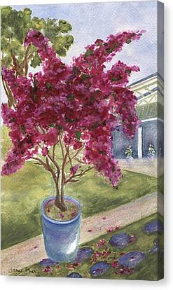 Canvas Print featuring the painting Kona Bougainvillea by Jamie Frier