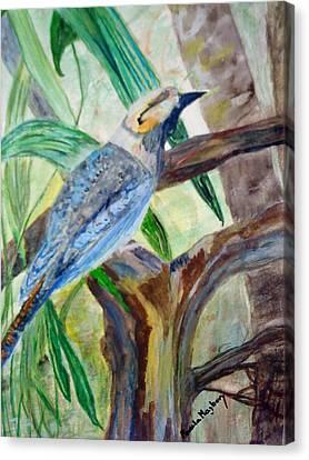 Kookaburra Dalcelo Leachii Canvas Print