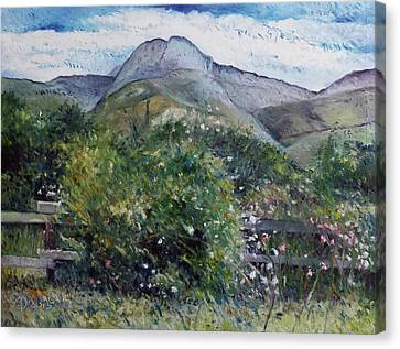 Kopberg Heidelberg Western Cape South Africa Canvas Print by Enver Larney