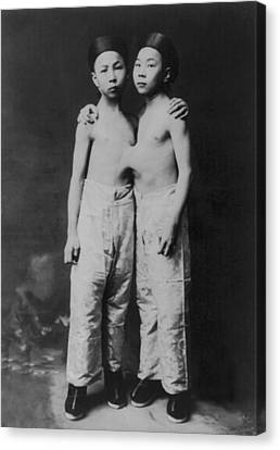 Korean Siamese Twins Standing Canvas Print by Everett