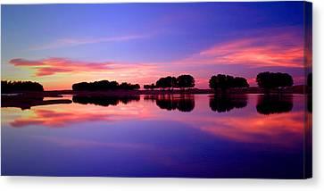 Ksar Ghilane Oasis At Sunset Canvas Print by John McKinlay