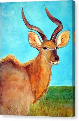 Kudu Canvas Print by Patricia Beebe