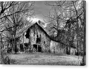 Kudzu Covered Barn In The Mississippi Delta Canvas Print