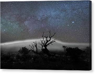 Kumulipo And The Sky Canvas Print