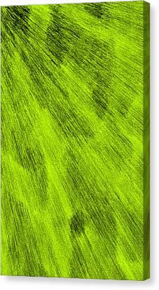 L2-115-187-255-0-3x5-1500x2500 Canvas Print