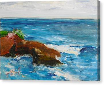 La Jolla Cove 051 Canvas Print