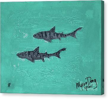 La Jolla Leopard Sharks Canvas Print by Myron Dong