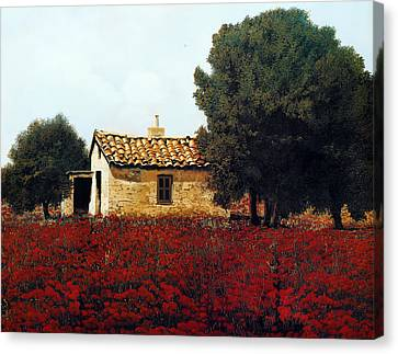 La Masseria Tra I Papaveri Canvas Print by Guido Borelli