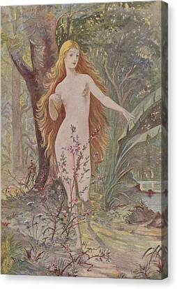 La Naissance De La Femme  Canvas Print by French School