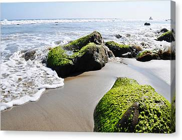 La Piedra Shore Malibu Canvas Print