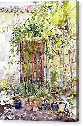La Puerta Vieja Y Macetas Canvas Print