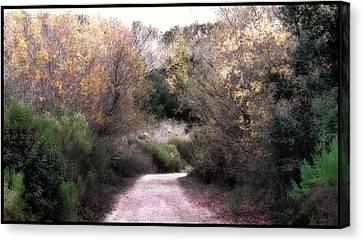 La Purisima Mission Trail Canvas Print by Lynn Andrews