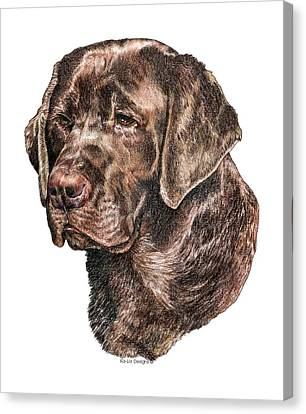 Labrador Retriever, Chocolate Lab Canvas Print by Kathleen Sepulveda