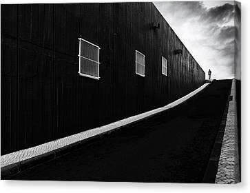 Labyrinth Of Air Canvas Print by Paulo Abrantes