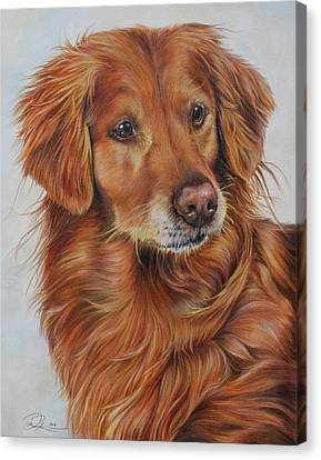 Working Dog Canvas Print - Lacey by Danielle Rosalie Pellicci