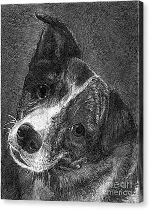 Lacey Canvas Print by Faithful Faces Pet Portraits