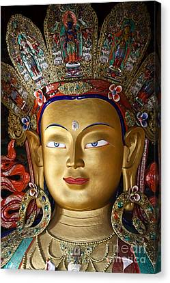 Tibetan Canvas Print - Ladakh Buddha by Derek Selander