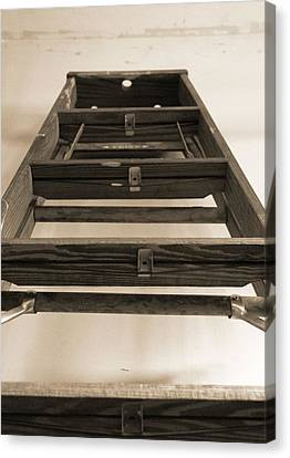 Ladder Canvas Print by Dan Sproul