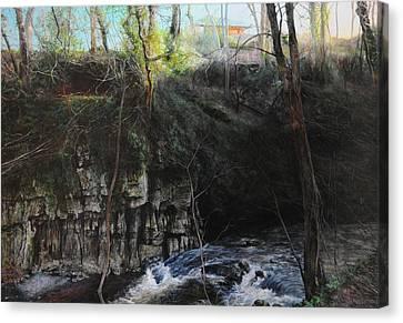 Lady Bagots Canvas Print