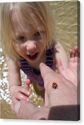 Canvas Print featuring the photograph Lady Bug  by Dan Whittemore