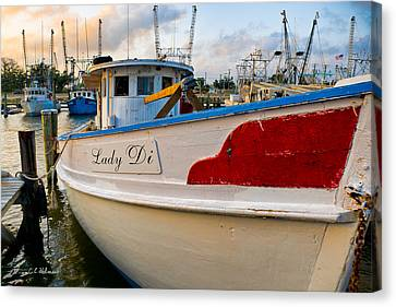 Lady Di Canvas Print by Christopher Holmes