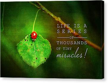 Ladybug On Leaf Thousand Miracles Quote Canvas Print