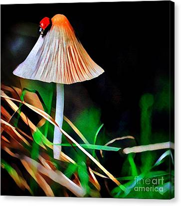 Ladybug On Mushroom Canvas Print