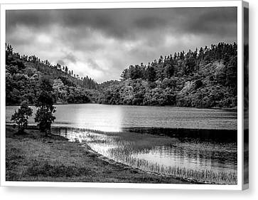 Lagoa Do Itapeva-pindamonhangaba-sp Canvas Print