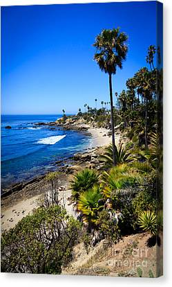 Laguna Beach California Beaches Canvas Print by Paul Velgos