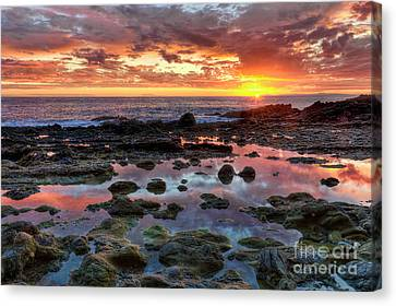 Canvas Print featuring the photograph Laguna Beach Tidepools At Sunset by Eddie Yerkish