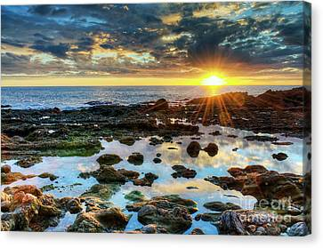 Canvas Print featuring the photograph Laguna Beach Tidepools by Eddie Yerkish