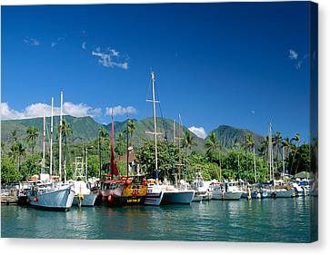 Lahaina Harbor - Maui Canvas Print by William Waterfall - Printscapes