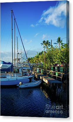 Canvas Print featuring the photograph Lahaina Marina Blue Twilight by Sharon Mau