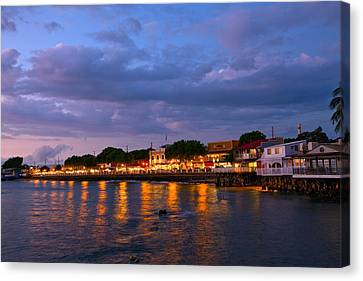 Lahaina Roadstead Canvas Print by James Roemmling