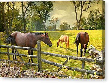 Horse Stable Canvas Print - Lake Avenue Horses by Diana Angstadt