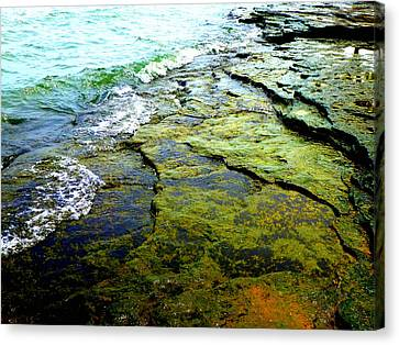 Lake Erie Flat Rocks  Canvas Print