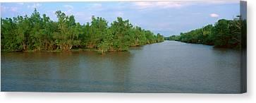 Lake Fausse Pointe State Park, Louisiana Canvas Print