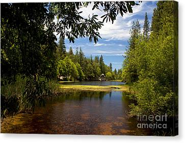 Lake Fulmor View Canvas Print by Ivete Basso Photography