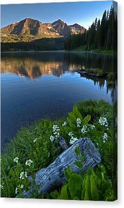 Lake Irwin Wildflowers Canvas Print by Mike Berenson