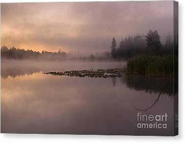 Lake Marsh Canvas Print